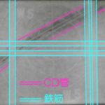 X線(レントゲン)撮影フィルム例2